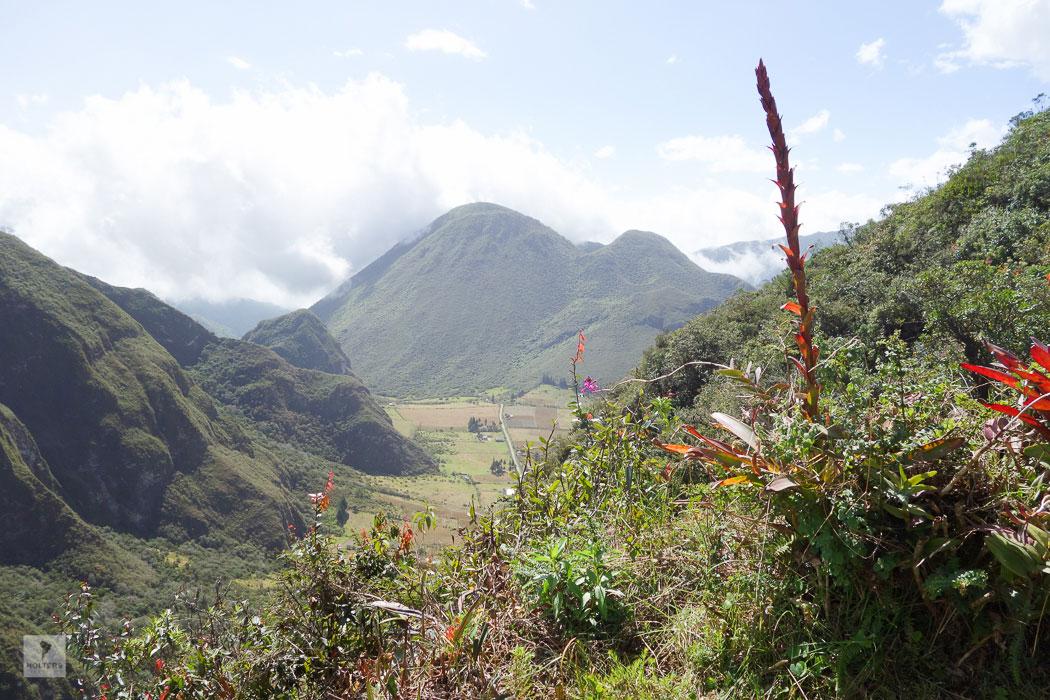 holters-suedamerika-ecuador-1-213