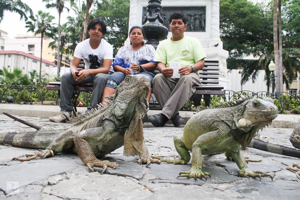Parque Iguana Guayaquil