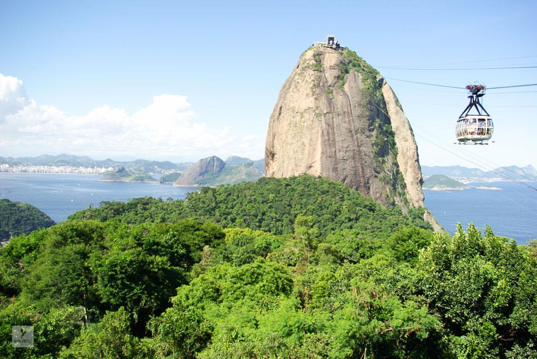 Rio de Janeiro – Pau de Acuzar